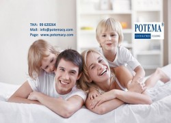 Potema Clever Mattress Cleaning Cover Image
