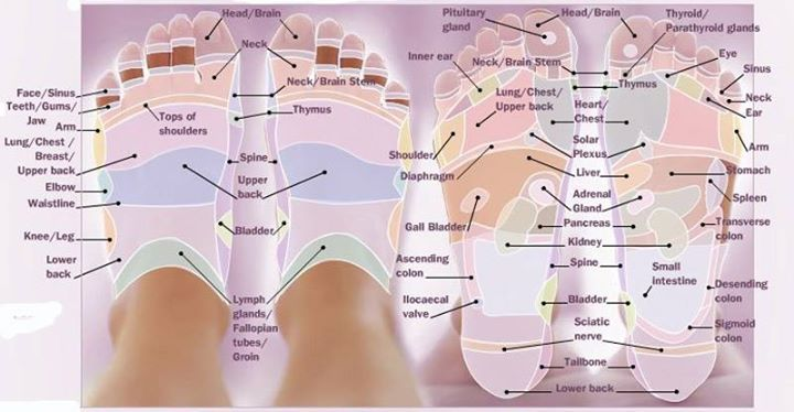 Erotic reflexology