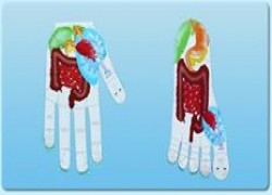 Reflexology, Diagnosis, Treatment, Massage Cover Image