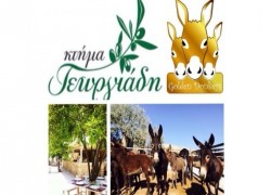 Ktima Georgiadi & Golden Donkeys Farm Cover Image
