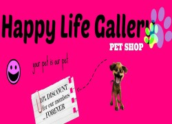 Happy life Gallery Cover Image