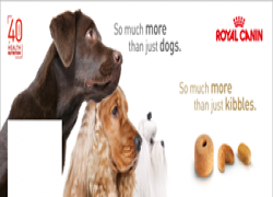 Royal Canin Cyprus Cover Image