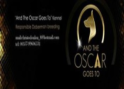 And The Oscar Goes To Kennel Cover Image