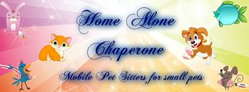 Home Alone Chaperone - Mobile Pet Sitters Cover Image on XploreCyprus