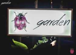 Garden Day & Night Cover Image