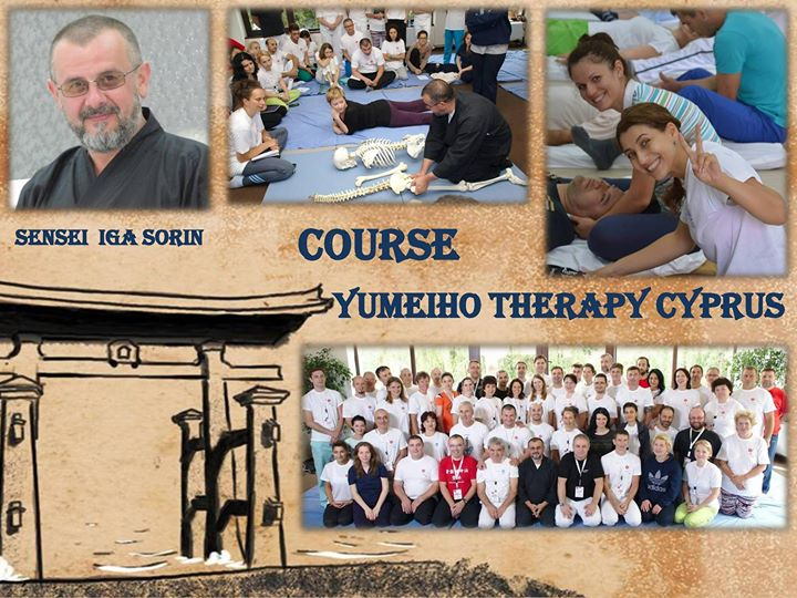 Japanese Manual Therapy Yumeiho Course Image